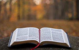 A revelação de Cristo – Miguel Ma
