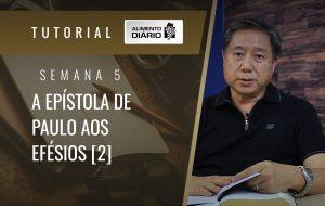 Alimento Diário A ideia central das epistolas de Paulo – Mensagem 5 – Tutorial
