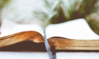 O Pentateuco dos pais – Jornal Árvore da Vida