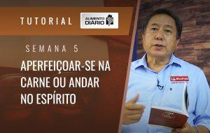 Alimento Diário Pastorear o rebanho de Deus – Mensagem 13 – Tutorial