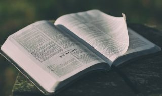 Como ser útil ao Senhor – Jornal Árvore da Vida