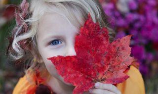 Os olhos do coração – Jornal Árvore da Vida