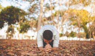 Conselhos que Salvam – Jornal Árvore da Vida