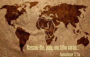 Projeto arca – África