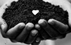 O amor singular de Deus pelo homem – Jornal Árvore da Vida