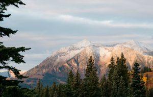 Lembrar para bendizer – Jornal Árvore da Vida