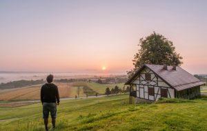 Um lar feliz – Jornal Árvore da Vida