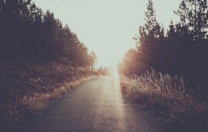 Conhecer e receber o reino e nele entrar – Jornal Árvore da Vida