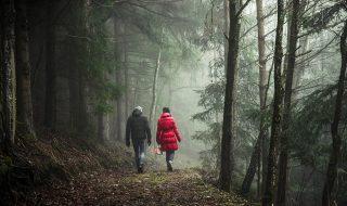 Quem comanda sua vida conjugal? – Jornal Árvore da Vida