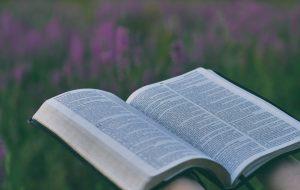 O QUE A BÍBLIA TEM PARA NÓS